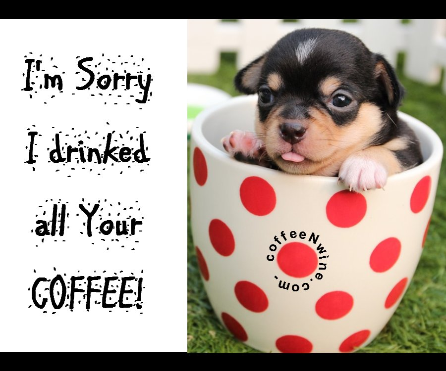 Sorry I Drinked All Your Coffee