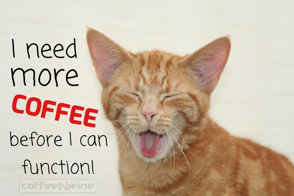 I Need More Coffee Before I Can Function
