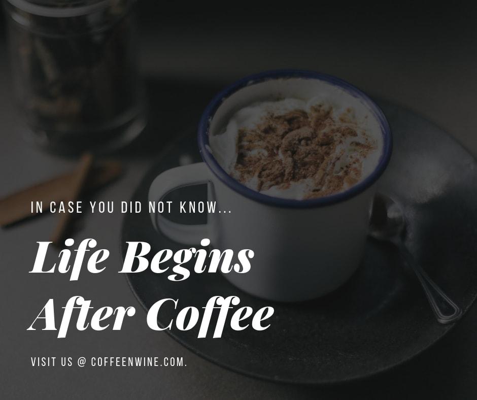 Life Begins After Coffee Facebook Twitter Pinterest