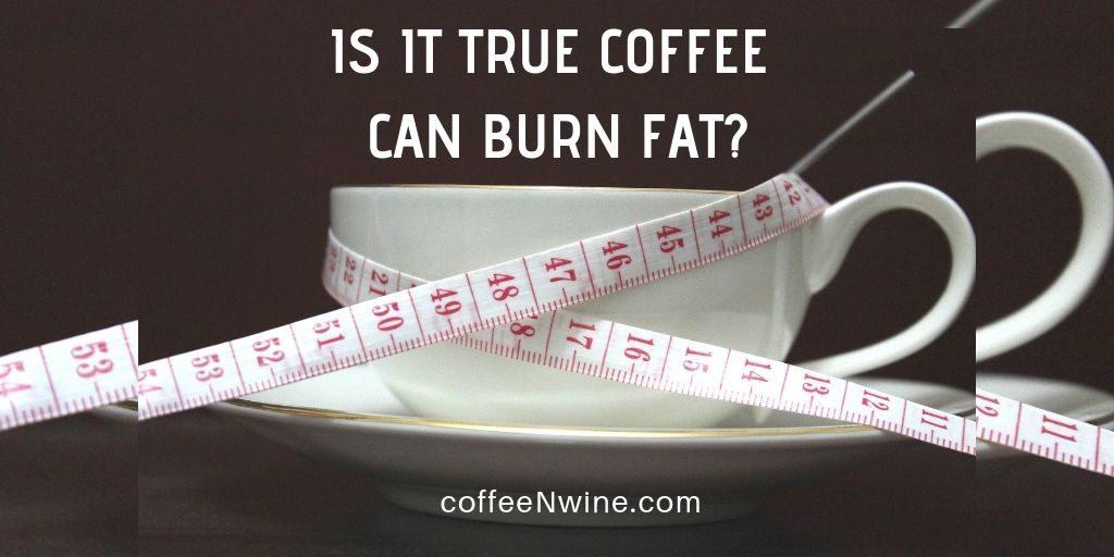 Is It True Can Coffee Burn Fat - Is It True Coffee Can Burn Fat